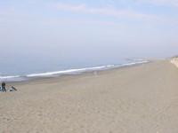 茅ヶ崎 海岸