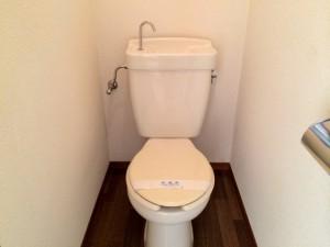 ハイツイシワタ3トイレ