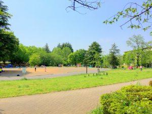 美しが丘公園 (7)